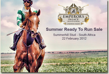 Emperors Palace Summerhill Ready To Run Sale