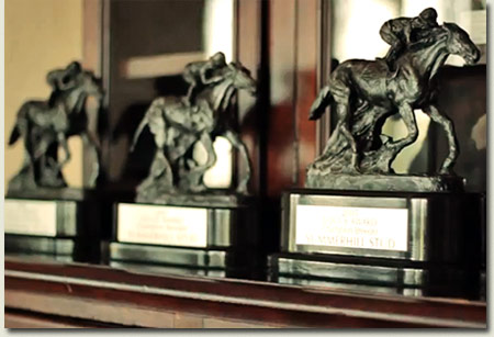 South African Thoroughbred Breeders Championship