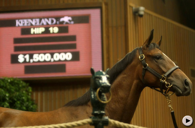 Keeneland September Yearling Sale Day 1 - Top Filly HIP 19 Medaglia d'Oro - Flying Passage