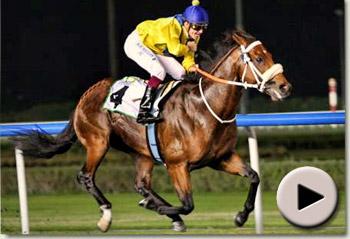 Musir wins the Al Maktoum Challenge Round 1