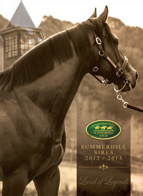 sires-brochure-2012-option-b.jpg