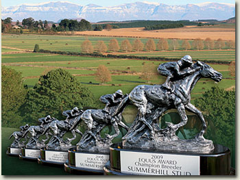 summerhill stud equus champion breeder trophies