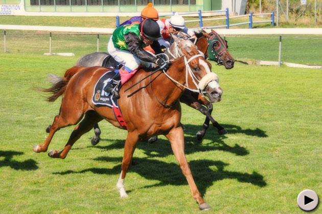 Blueridge Mountain - Graham Beck Memorial Sceptre Stakes