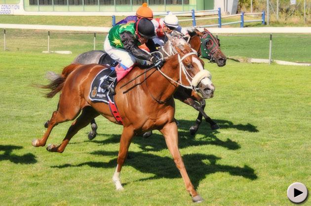 Blueridge Mountain - Graham Beck Memorial Sceptre Stakes