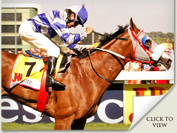 Past Master Vodacom Durban July Runner