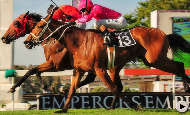 Emperors Palace Ready To Run Cup 2012