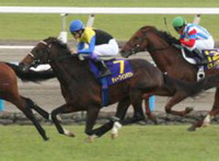 Deep Impact winning the kika sho