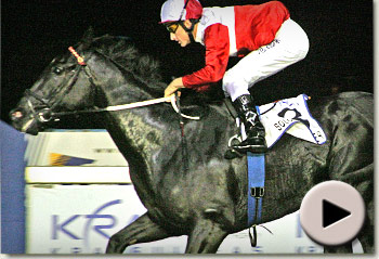 Solo Traveller wins the KRA Guineas (Korean Racing Authority)