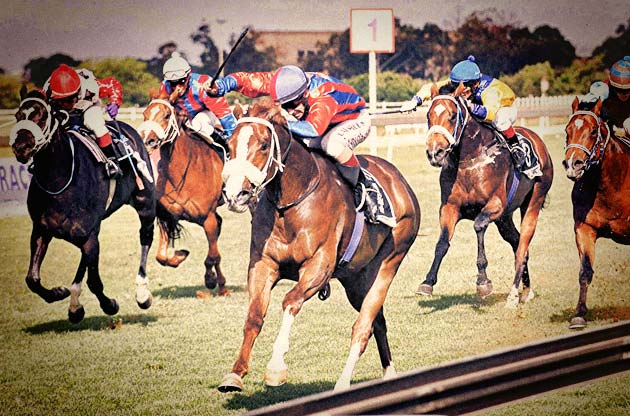 Umngazi wins the 2007 Emperors Palace Ready To Run Cup