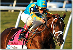 eskendereya fountain of youth stakes video