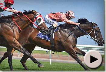 Black Caviar wins Lightning Stakes 2012