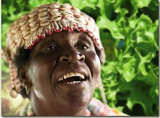sangoma and lettuce