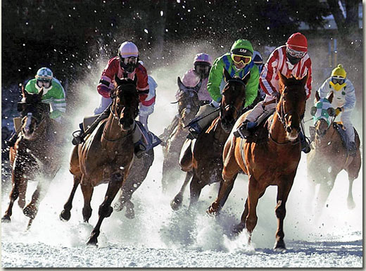 white turf racing