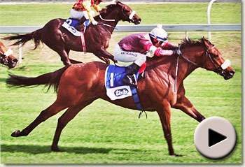 uhear the drums winning the glendore sprint at arlington racecourse