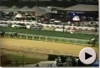 Well Armed wins the 2009 Dubai World Cup