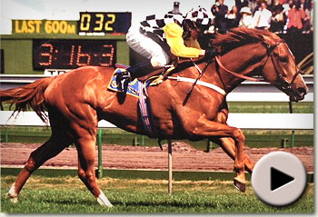 Saintly winning the 1996 Melbourne Cup