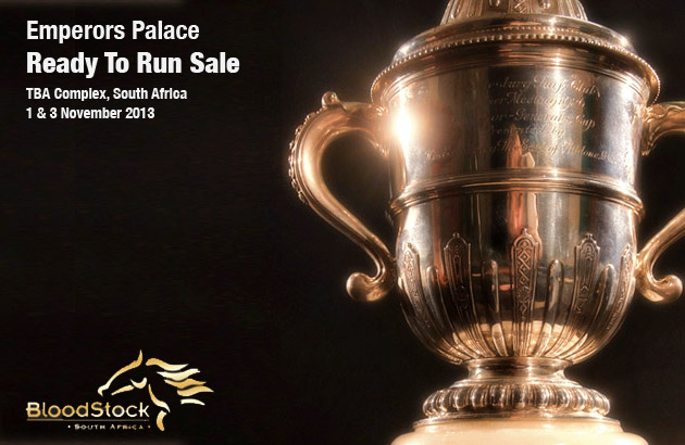 Emperors Palace Ready To Run Sale 2013