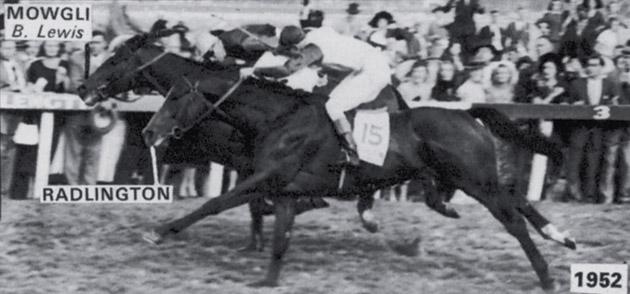 Mowgli and Radlington - 1952 Durban July