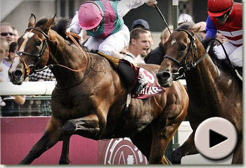 Workforce wins Prix de l'Arc de Triomphe