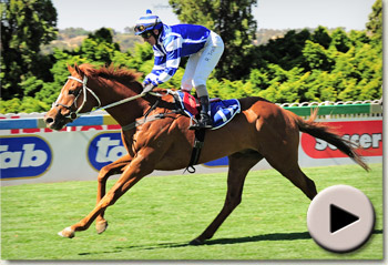 Verrochio wins maiden for trainer Sean Tarry