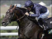 yeats and mick kinane