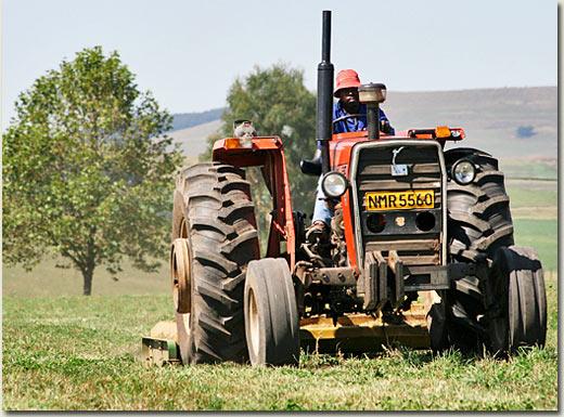 summerhill tractor (michael nefdt)