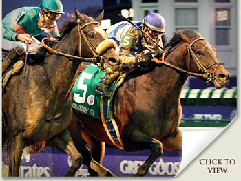blame and zenyatta fighting out the finish of the 2010 breeders cup classic