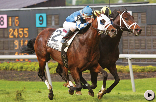 Brave Tin Soldier - Cliff Hanger Stakes