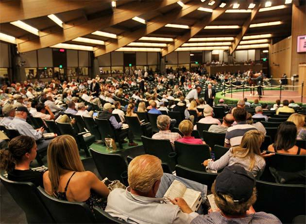 keeneland-september-yearling-2012-5.jpg