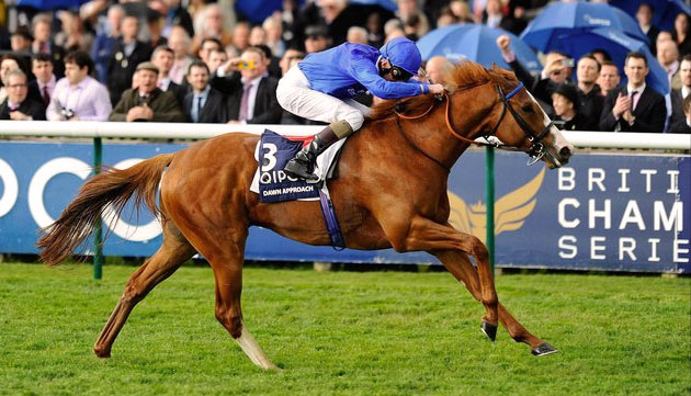 Dawn Approach - 2000 Guineas