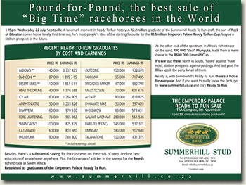 best racehorse sale sale in the world