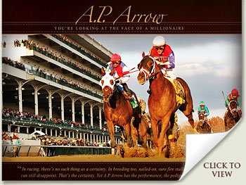 ap arrow clark handicap