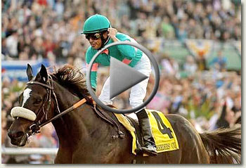 zenyatta breeders' cup classic 2009 santa anita racecourse 7 november 2009 video