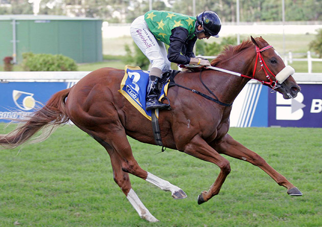 Allan Robertson Fillies Championship contender, Rich Girl, winning the Strelitzia Stakes (Grade 3) - Gold Circle (p)