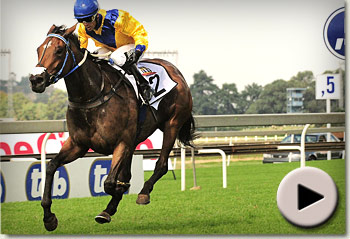 Igugu by Galileo winning the Gauteng Fillies Guineas for trainer Mike de Kock