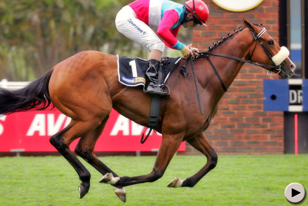 Love Struck wins KZN Guineas Trial