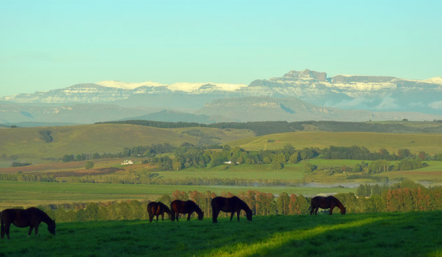Snow on Drakensberg Mountains