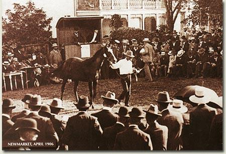 inglis sale newmarket 1906