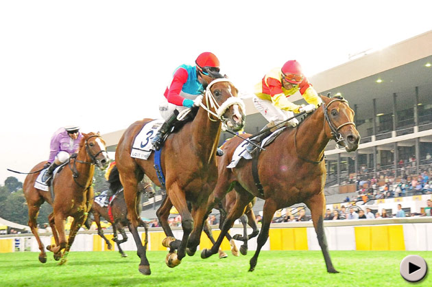 Love Struck wins SA Classic