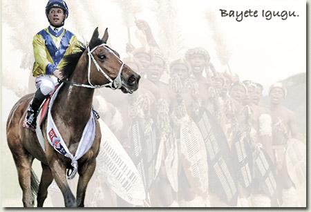 Igugu - KwaZulu Natal Horse Of The Year