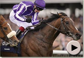 Camelot wins 2012 QIPCO 2000 Guineas
