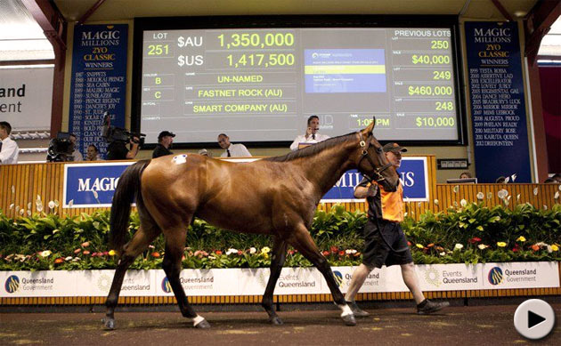 Magic Millions Gold Coast Yearling Sale - Lot 251