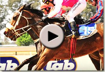 sucha wonder by way west winning her maiden at the vaal racecourse
