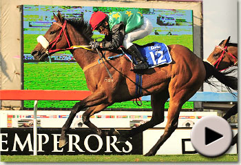 hollywoodboulevard winning the emperors palace ready to run cup for markus and ingrid jooste