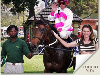 single tempo racehorse