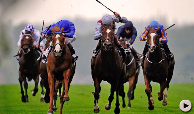 Dawn Approach wins the St james's Palace Stakes
