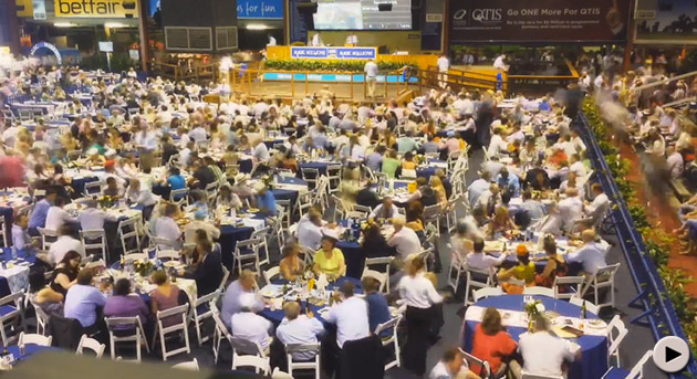 magic millions gold coast yearling sale