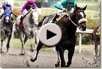 video of zenyatta winning the 2010 vanity handicap at hollywood park