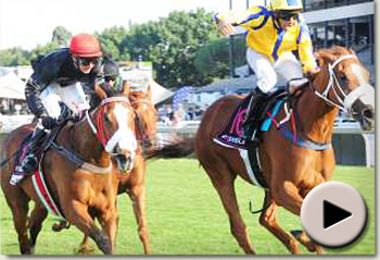 flirtation winning the sansui summer cup 2010