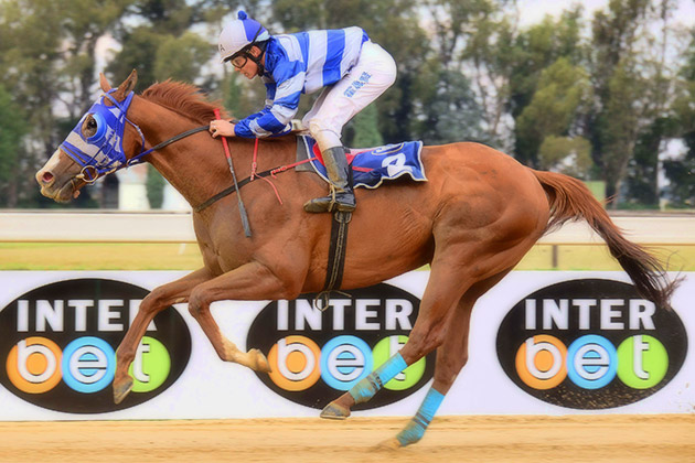 Summerhill-bred Uncle Tommy wins the Highveld Sand Challenge (L) / JC Photos (p)